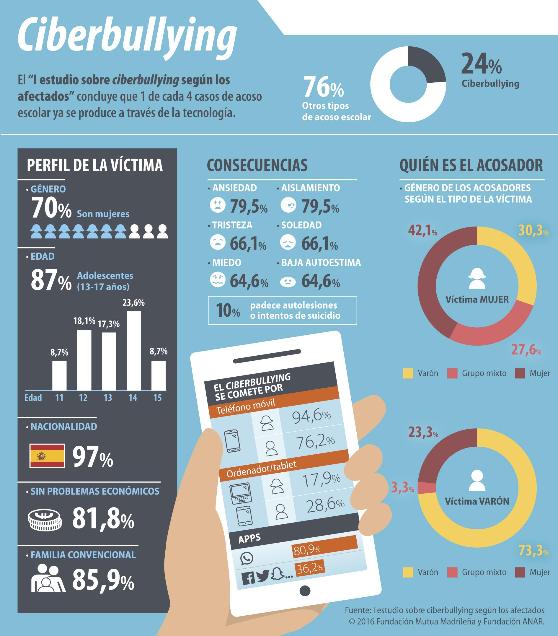 Infografa_ciberbullying.jpg
