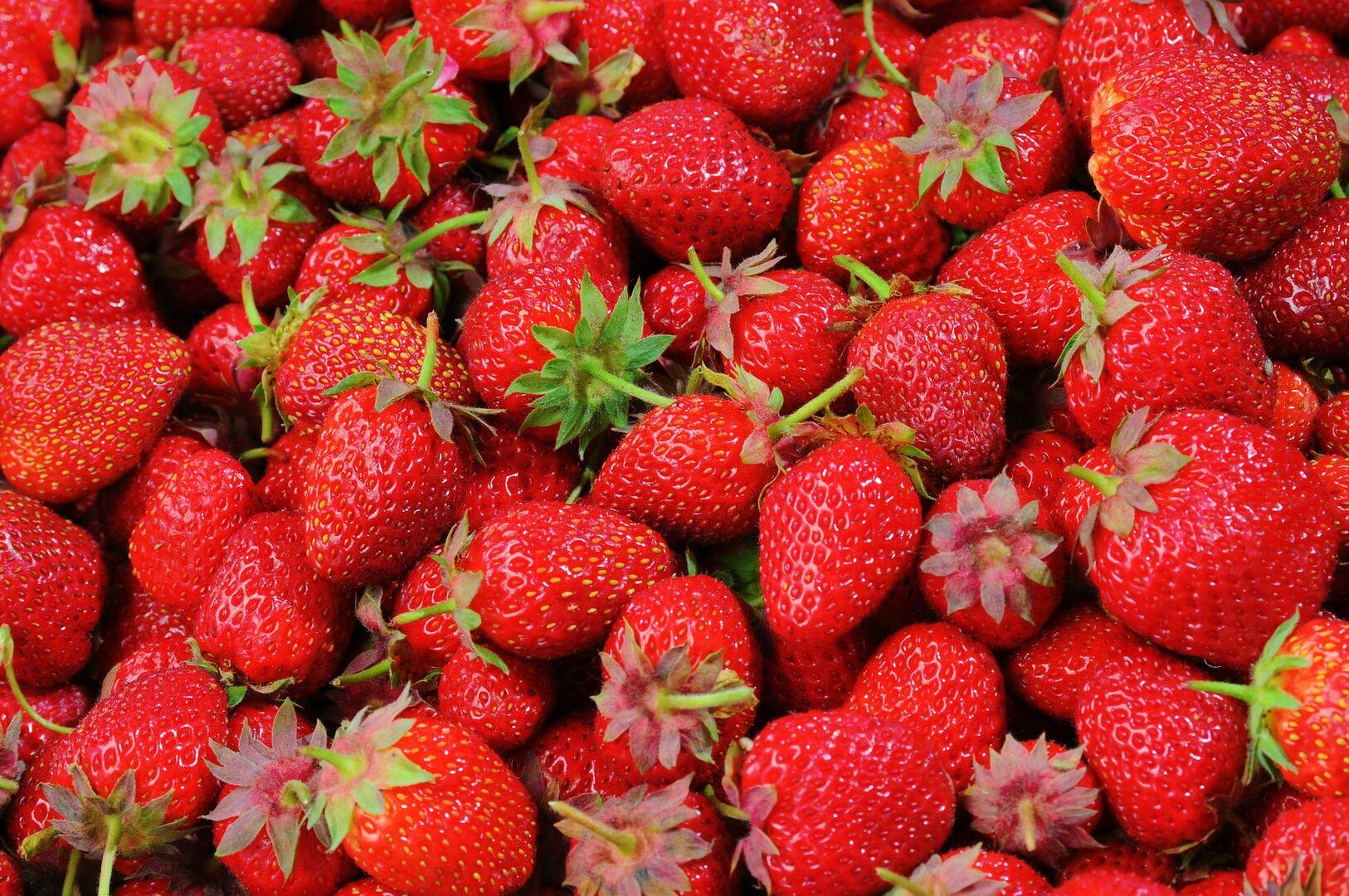 Trabajo de recogida de fruta en murcia