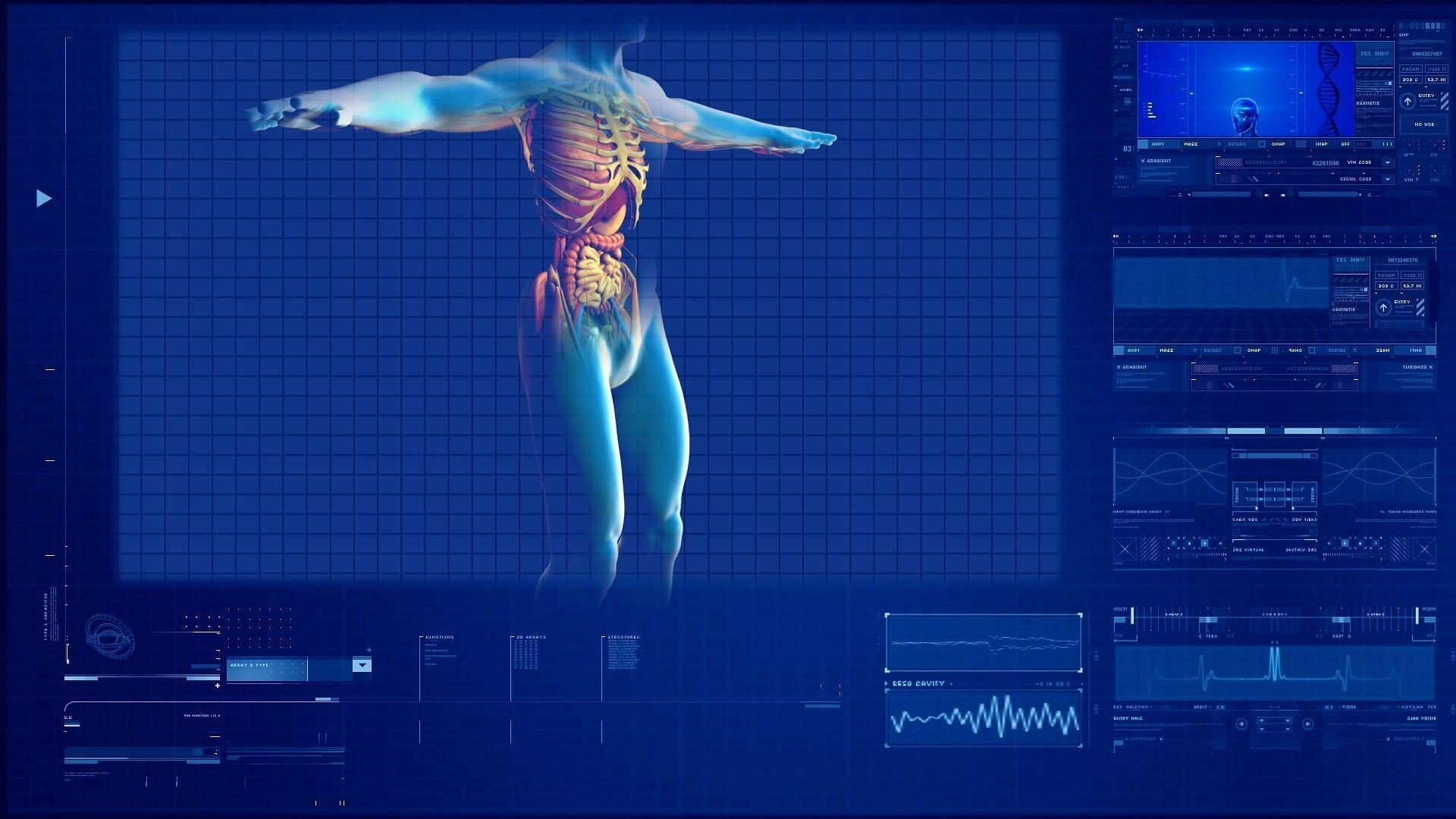 Descubren el intersticio, uno de los órganos más grandes del cuerpo ...