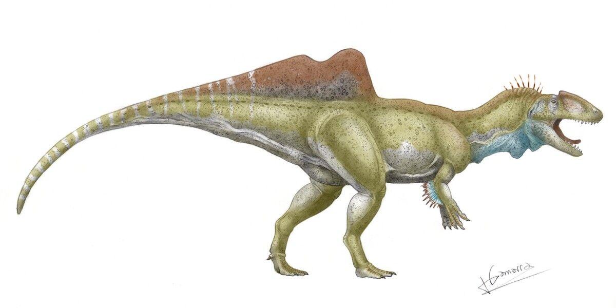 Pepito El Temible Dinosaurio Espanol Que Se Ha Colado En Jurassic World Libertad Digital Los reptiles mesozoicos del registro español. pepito el temible dinosaurio espanol
