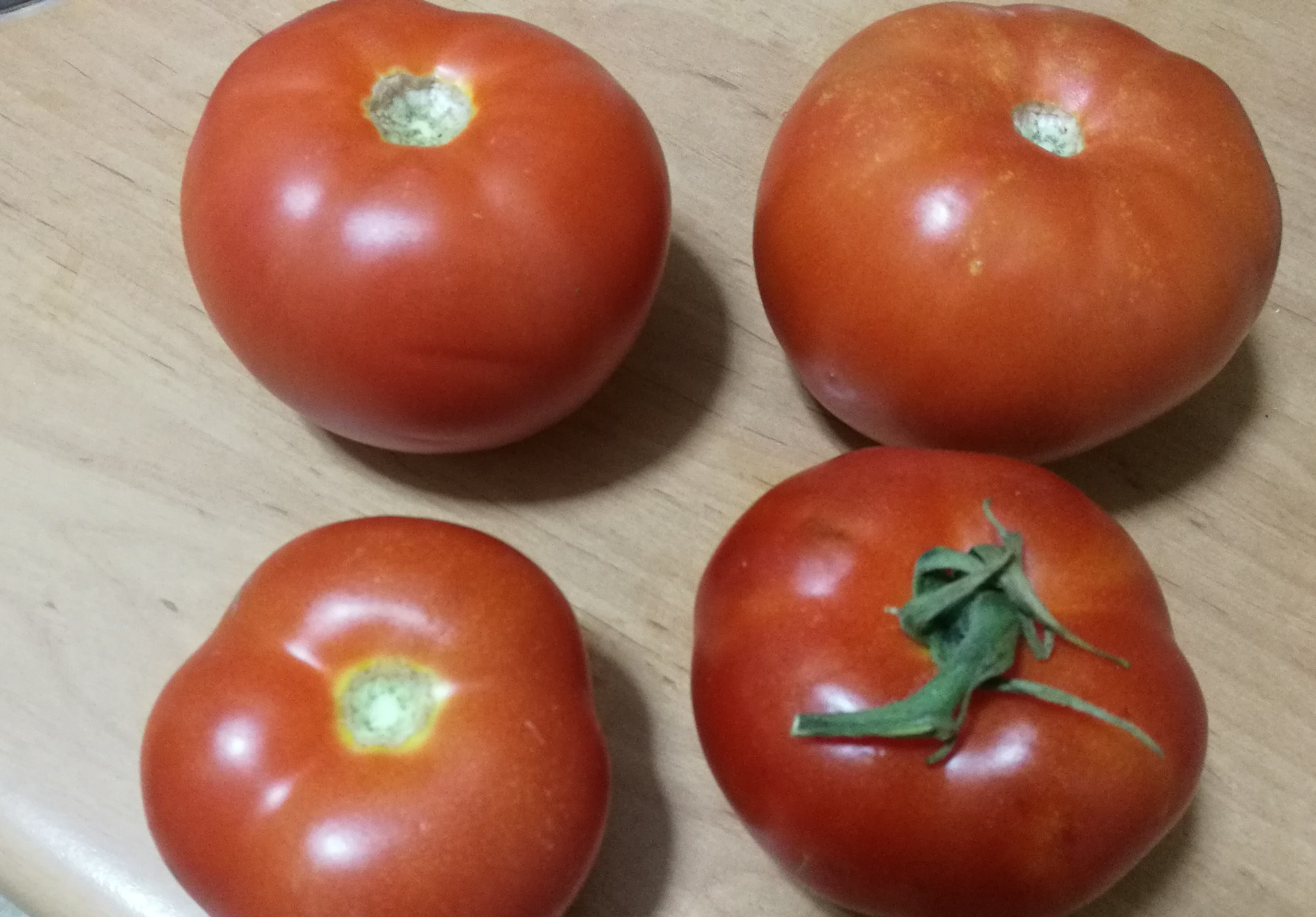 tomates-amazon.jpg