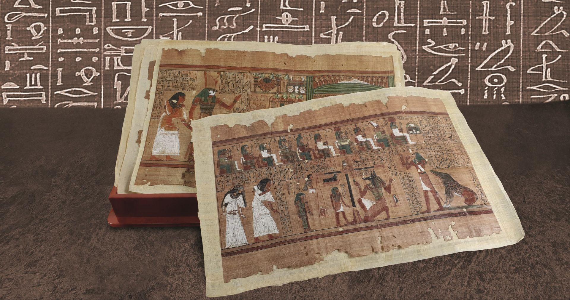 papiro-ani-cmeditores1.jpg