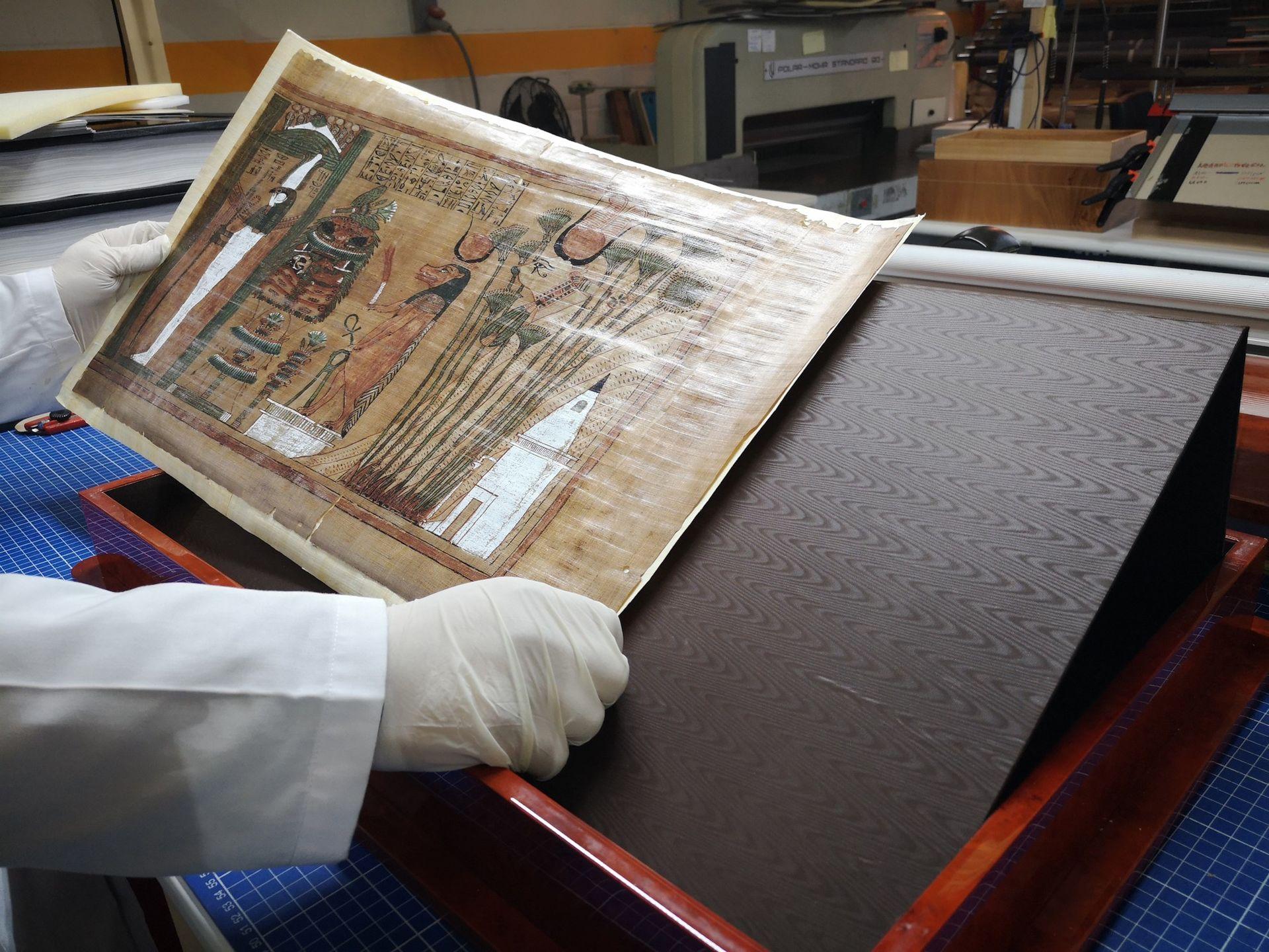 papiro-ani-cmeditores2.jpg