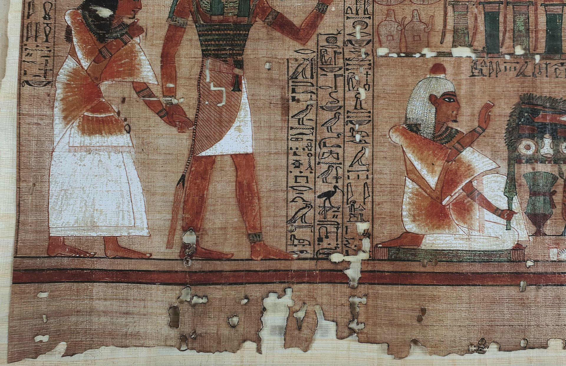 papiro-ani-cmeditores4.jpg