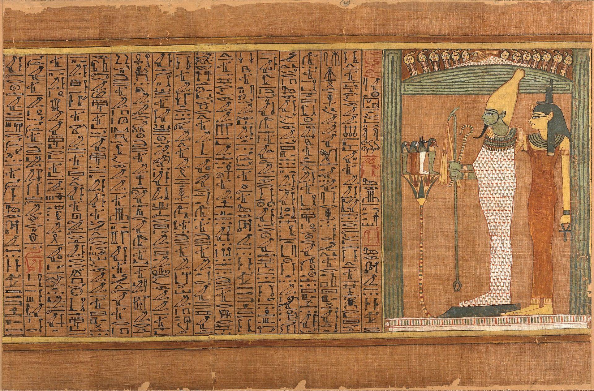 papiro-ani-cmeditores5.jpg