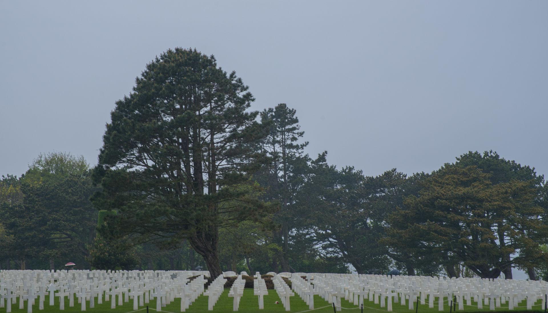 normandia12-cementerio-americano.jpg