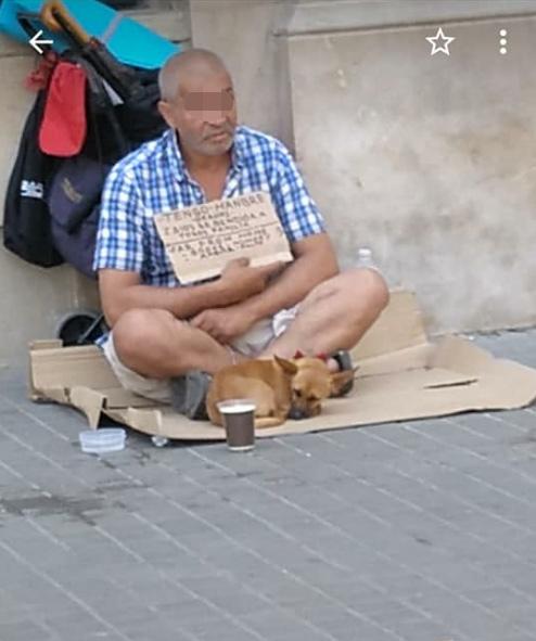 mendigo-perros-1.jpg
