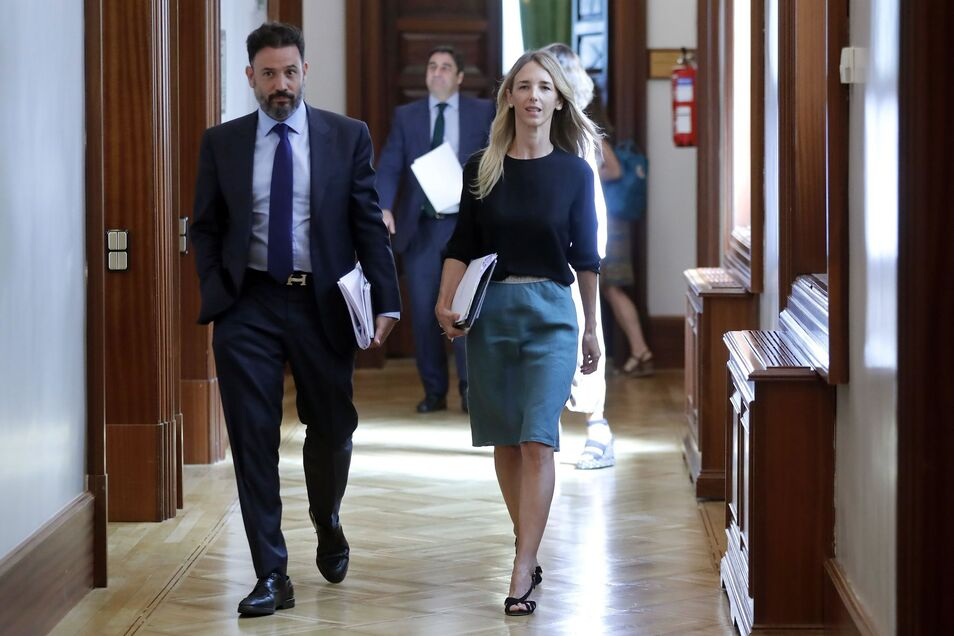 España Suma y sus votantes
