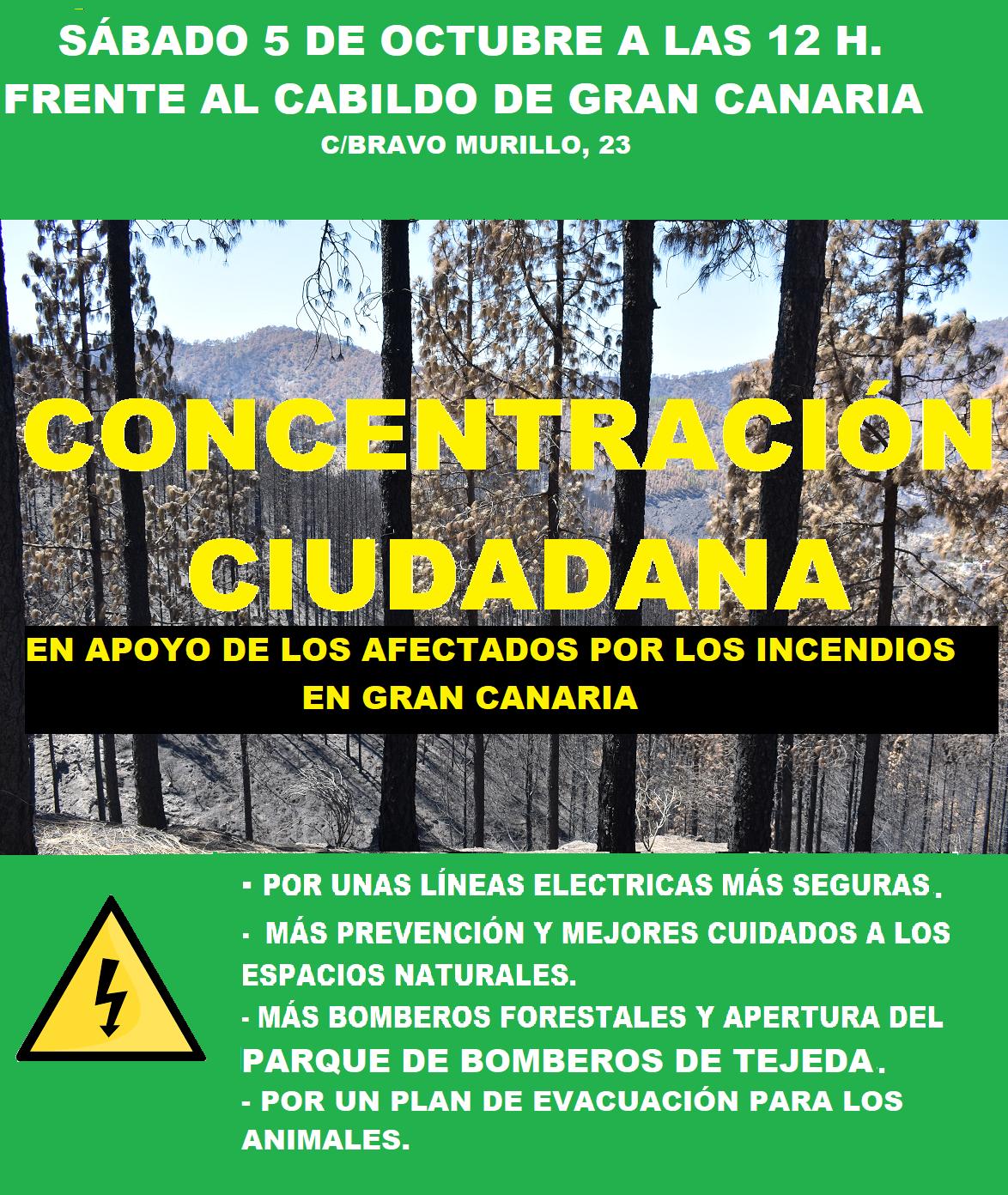 cartel-manifestacion-canarias-incendiosj