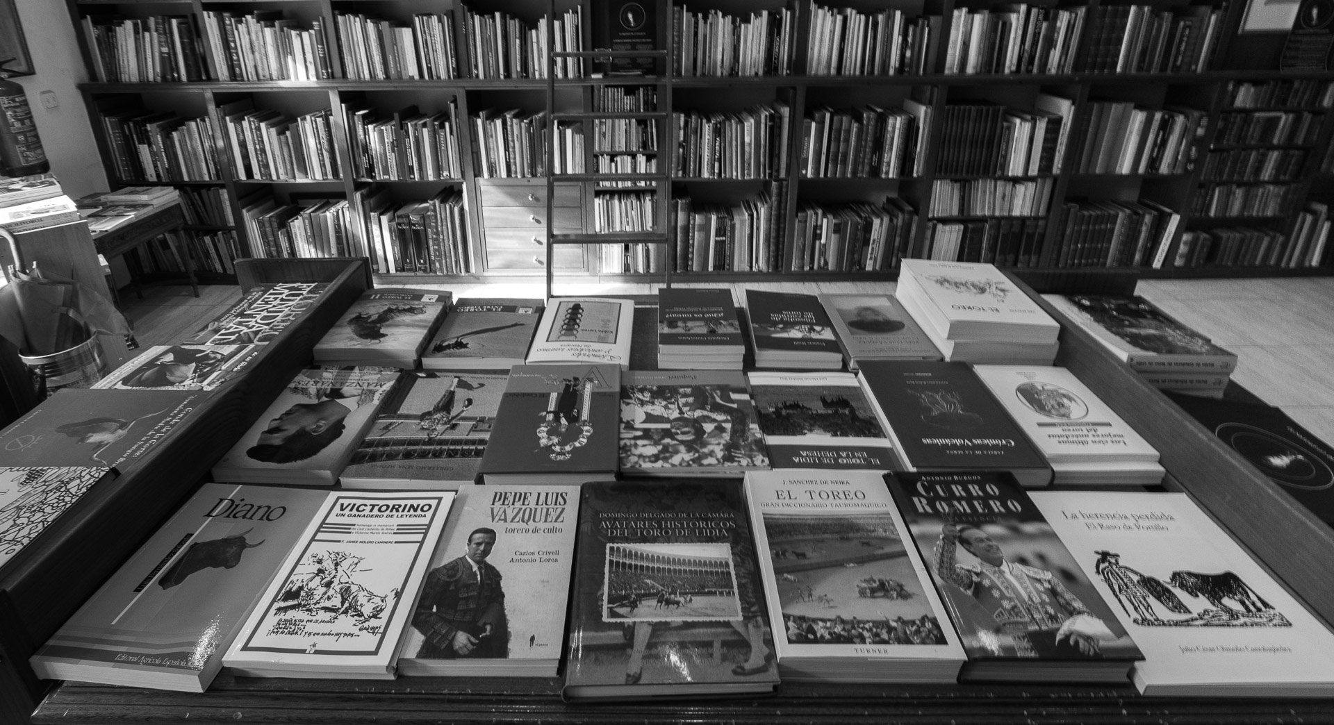 librerias-madrid-rodriguez-fina.jpg