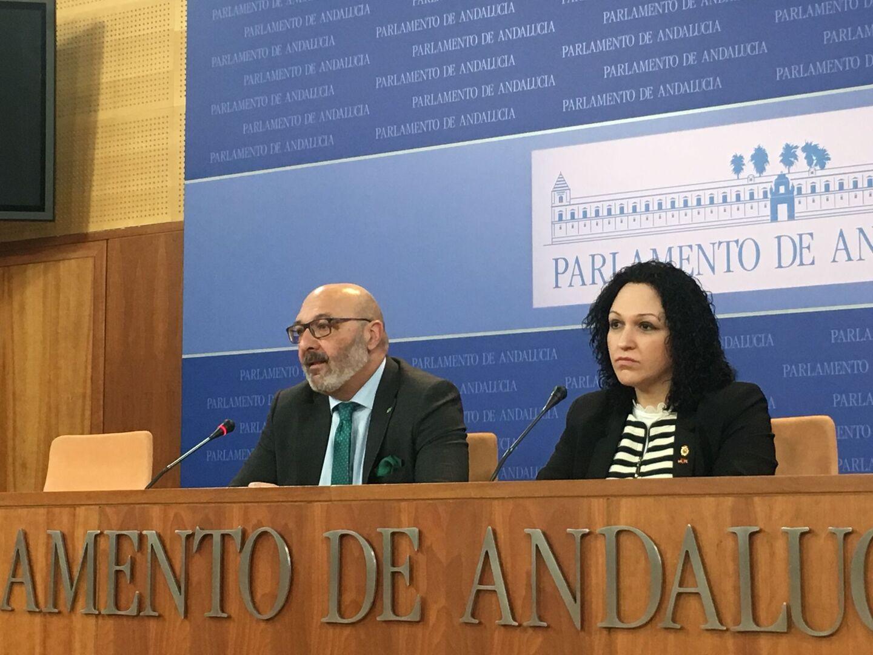 """La diputada de Vox en Almería se va entre acusaciones de acoso laboral mientras el partido habla de """"pataleta"""""""