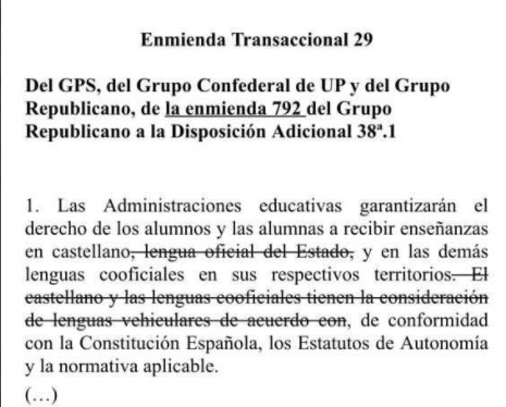 enmienda-castellano-celaa.jpg