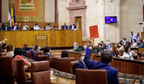La ruptura de Vox en Andalucía fuerza al PP a apoyarse en  aliados inesperados