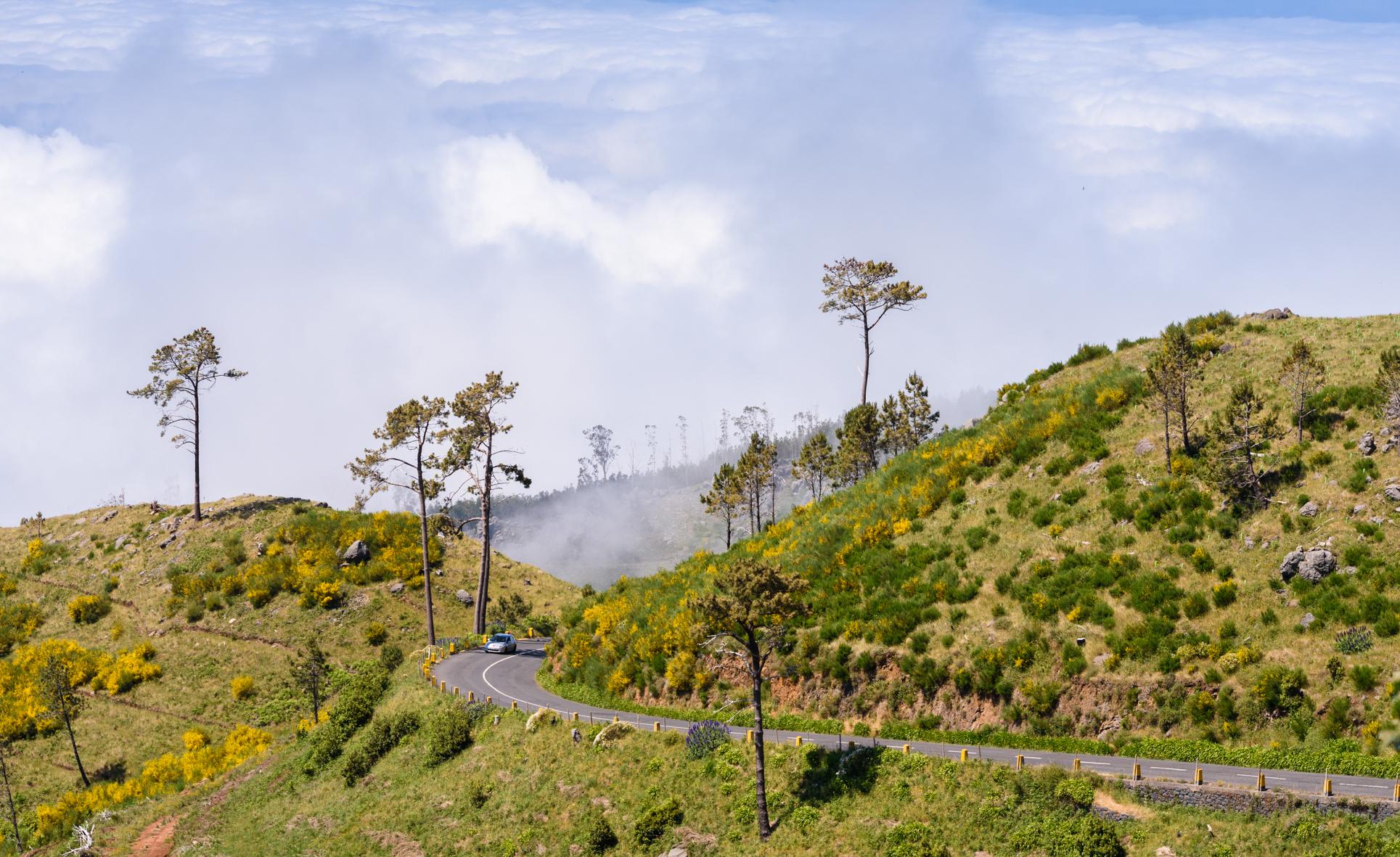 madeira-portugal-levadas-pico-arieiro-viajes-00001.jpg
