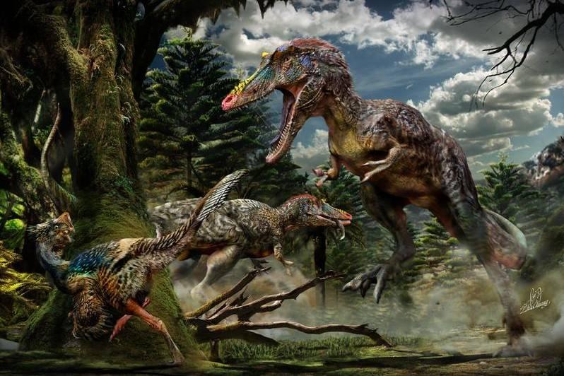 Los Dinosaurios No Desaparecieron Solo Por Un Meteorito Libertad Digital Algunos dinosaurios y especies como este reptil volador posiblemente seguirían vivos si el meteorito hubiera impactado en otro lugar, según el estudio.credit.mark garlick, vía science source. los dinosaurios no desaparecieron solo