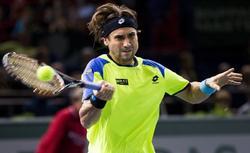 David Ferrer jugará la final en el Másters 1000 de París-Bercy. | EFE