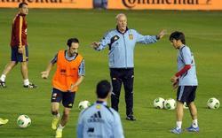 Del Bosque dirige el entrenamiento de la selección española en el Carlos Belmonte. | EFE