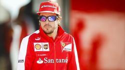 McLaren quiere contar con Fernando Alonso en 2015. | Archivo