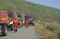 La UME trabajando para la extinción de un incendio forestal | Archivo