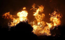 Las llamas, en la Sierra Negra en el municipio de Coín | EFE