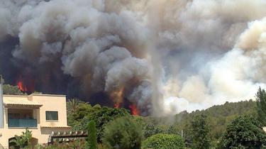 El fuego ha obligado a desalojar varias viviendas en los alrededores de Andratx. | Cordon Press