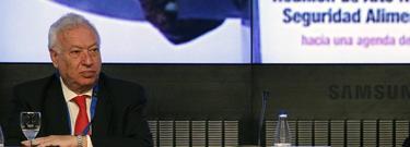 José Manuel García-Margallo | Efe