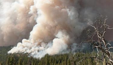 Incendio en Yosemite | EFE