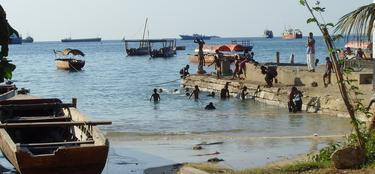 Oeste de Zanzíbar | Ebel CC