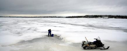 Los árboles que permitieron hacer el estudio se conservaron intactos en lagos helados de Laponia. | Flickr/Angelo Failla