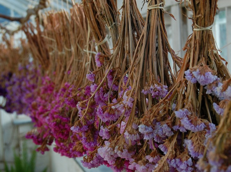 Flores Invernales Y Coronas Navidenas Para Un Estilo Rustico Chic - Decorar-con-flores-secas