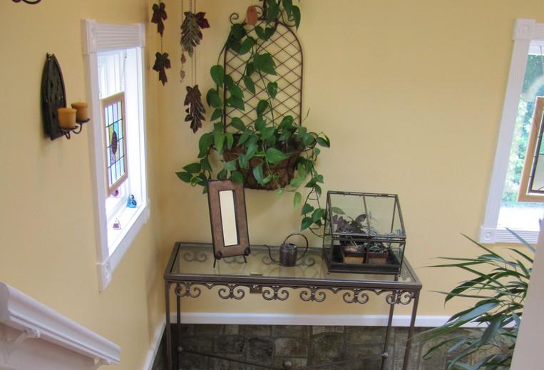 Decora tu hogar con plantas de interior chic for Plantas naturales para decorar interiores