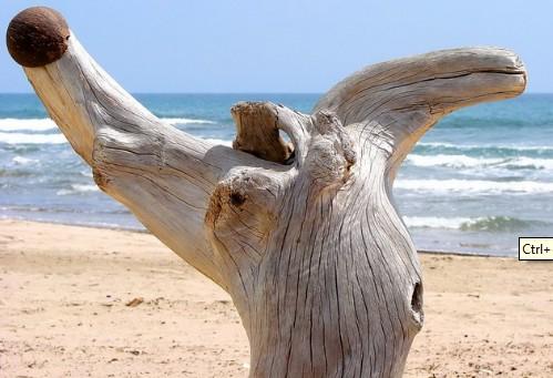 Decorar con troncos de madera Chic
