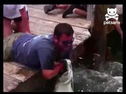 Un enorme pez muerde a un hombre