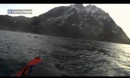 Un piragüista se cruza con una ballena en Noruega